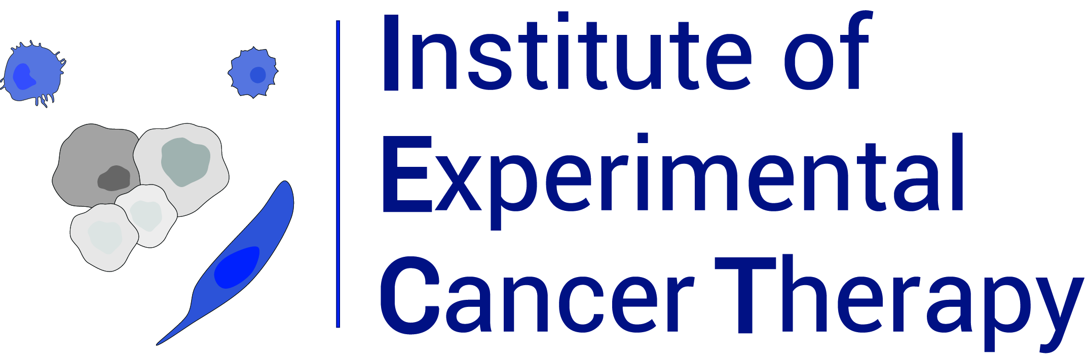 exp-cancertherapy